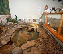 The Turtle Pond, and Matt Quenaudon, our Curator for the 2012 season